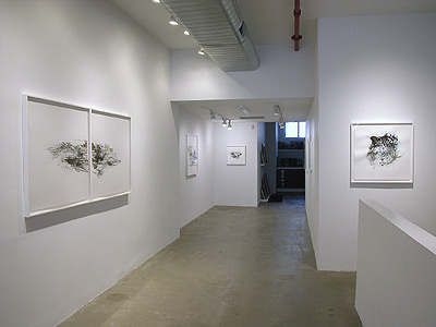 Installation view 2013 6