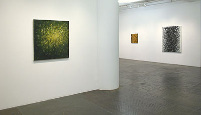 Installation View 2011 1